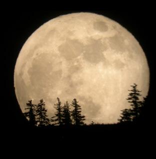 full-moon-circle